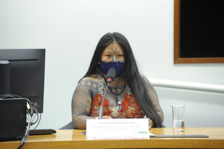 Audiência Pública - Violações e violências contra as mulheres indígenas no Brasil. Associação das Mulheres Munduruku - Articulação dos Povos Indígenas do Brasil - APIB, Alessandra Munduruku