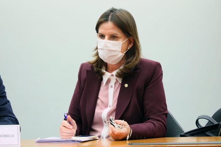 Deputada Carmen Zanotto (CIDADANIA-SC)