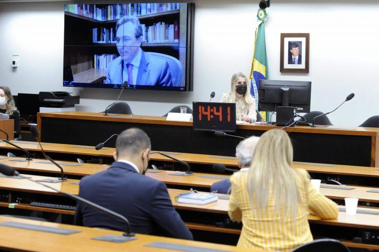 Audiência Pública - Imposto de Renda na Seguridade Social e planejamento familiar. Professor da Universidade de São Paulo, Heleno Taveira Torres