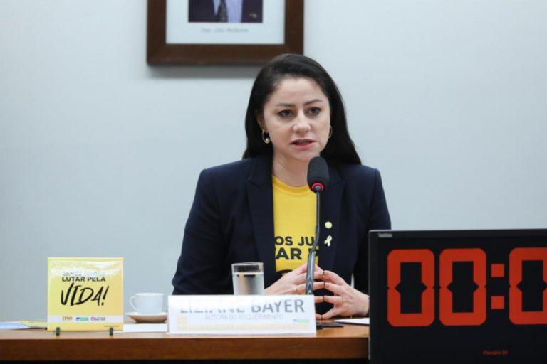 Liziane Bayer participa de audiência pública